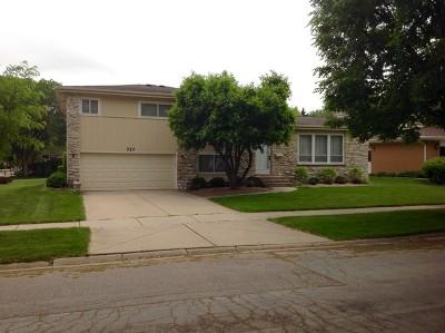 Palatine Single Family Home New: 727 East Meadow Lane