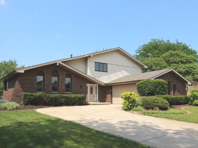Homer Glen Single Family Home New: 12348 West Prairie Drive