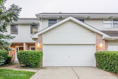 Downers Grove Condo/Townhouse For Sale: 1038 Pinewood Drive