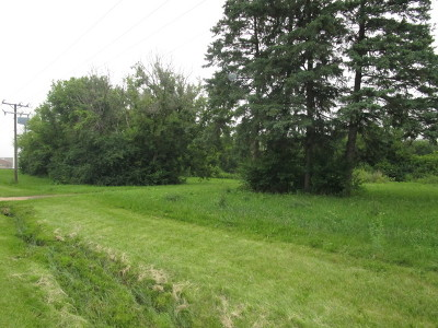 Mc Henry County Residential Lots & Land New: 900 Diggins Street