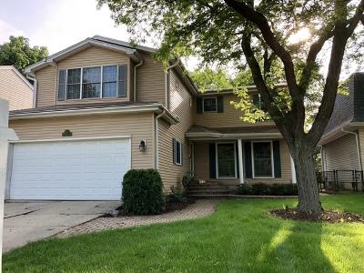 Glen Ellyn Single Family Home For Sale: 162 Newton Avenue