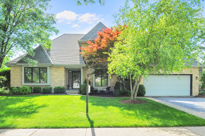 Naperville Single Family Home New: 1767 Frost Lane