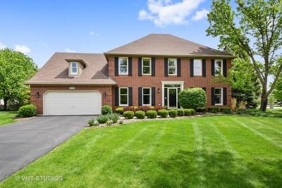 Naperville IL Single Family Home New: $504,900