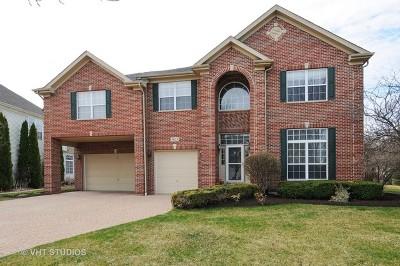 Naperville IL Single Family Home New: $615,000