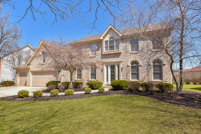 Naperville Single Family Home New: 1420 Monarch Circle