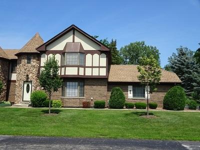 Palos Park Condo/Townhouse For Sale: 11663 South Black Forest Lane