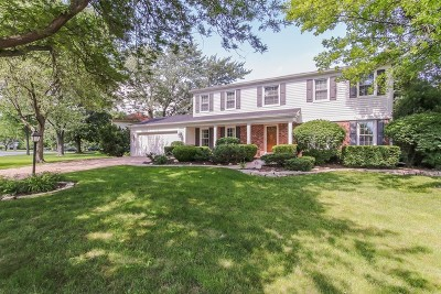 Palatine Single Family Home For Sale: 925 South Willow Walk Drive