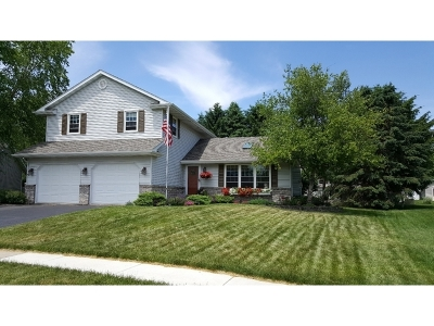 Ogle County Single Family Home New: 209 Morning Star Court