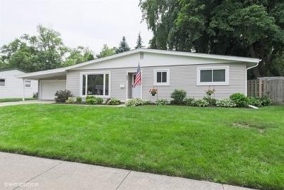 Palatine Single Family Home New: 625 East Macarthur Drive