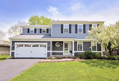 Grayslake Single Family Home New: 435 Bristol Lane