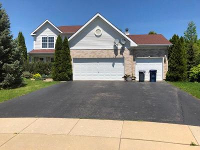 Algonquin IL Single Family Home New: $279,900