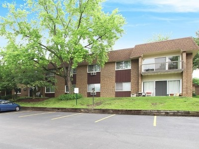 Woodridge Condo/Townhouse For Sale: 3435 83rd Street #C-15
