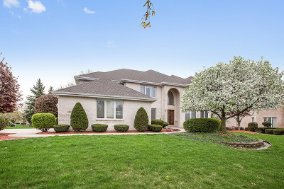 Orland Park IL Single Family Home New: $597,000
