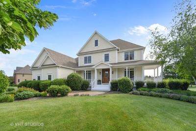 St. Charles Single Family Home New: 7n345 Stevens Glen Road