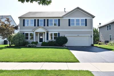 Elburn Single Family Home For Sale: 1125 Swan Drive