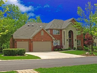 New Lenox, Joliet, Orland Park, Homer Glen, Lockport, Manhattan, Tinley Park, Frankfort, Mokena Single Family Home New: 715 Stonebridge Road