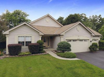 Carpentersville Single Family Home For Sale: 6503 Preston Court