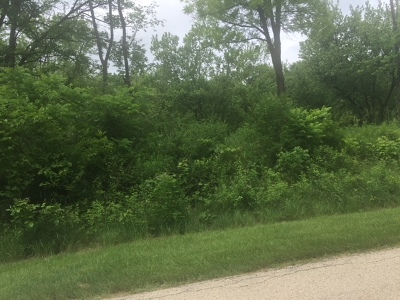 St. Charles Residential Lots & Land For Sale: 5n572 Hidden Springs Drive