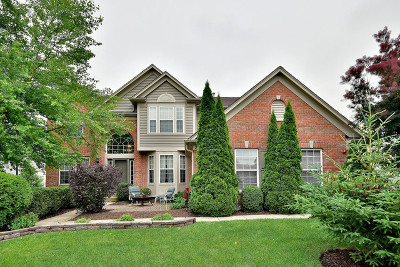 West Dundee Single Family Home For Sale: 2778 Connolly Lane
