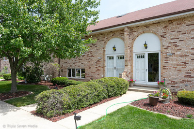 Orland Park Condo/Townhouse New: 15226 South 74th Avenue #55