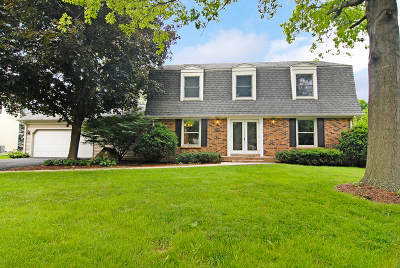 Naperville Single Family Home New: 25w230 Mayflower Avenue