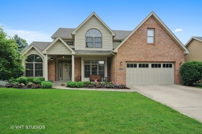 Naperville IL Single Family Home New: $549,900