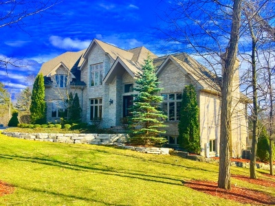Burr Ridge IL Single Family Home New: $1,499,000
