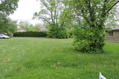 Tinley Park Residential Lots & Land For Sale: 17808 Ridgeland Avenue