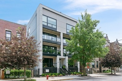 Chicago Condo/Townhouse New: 1033 South Racine Avenue #3NR