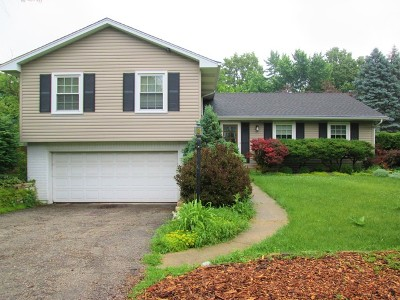 Winfield Single Family Home For Sale: N309 County Farm Road