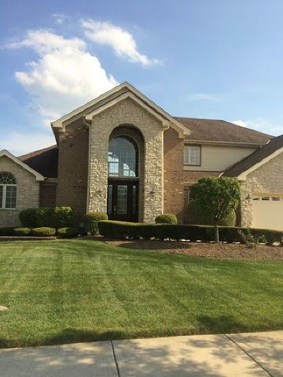 Frankfort Single Family Home For Sale: 21427 Brittany Drive