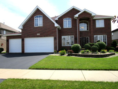 Matteson Single Family Home For Sale: 905 Donnington Drive