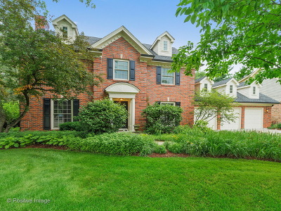 Wheaton Single Family Home For Sale: 344 Oakwood Court