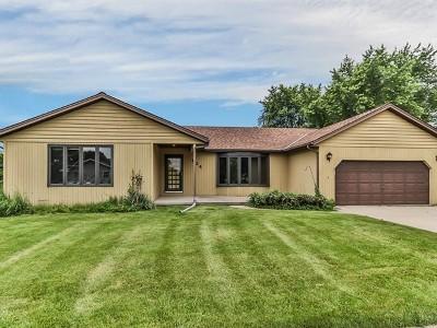 South Elgin Single Family Home New: 624 Michigan Avenue