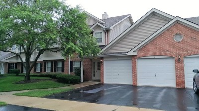 Palatine Condo/Townhouse New: 1201 North Williams Drive #8