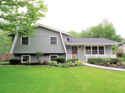 Downers Grove IL Single Family Home New: $549,900