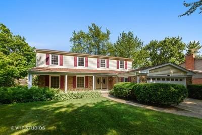 Palatine Single Family Home For Sale: 969 North Carmel Drive