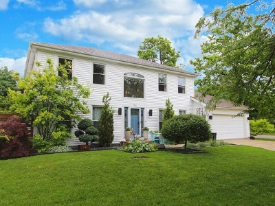 Lake Zurich Single Family Home For Sale: 1048 Wilmette Terrace