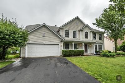 Bolingbrook Single Family Home New: 121 Peace Avenue