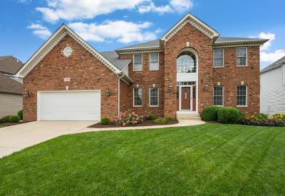 Oswego Single Family Home For Sale: 304 White Pines Lane