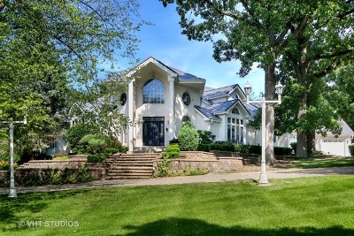 Lemont Single Family Home For Sale: 45 Brookside Drive