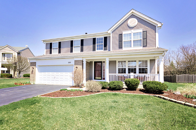 Grayslake Single Family Home New: 1330 Woodside Court
