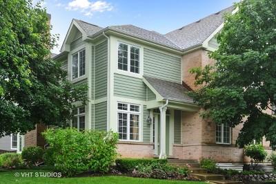 Libertyville Condo/Townhouse For Sale: 227 Newberry Avenue