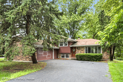 Naperville Single Family Home New: 11s612 McGrath Lane