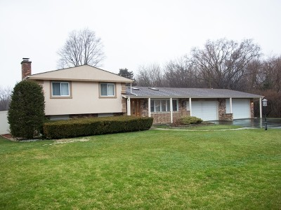 Lincolnshire Single Family Home New: 23042 North Apple Hill Lane