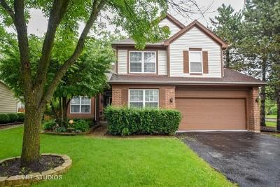 Grayslake Single Family Home New: 204 Lenox Court