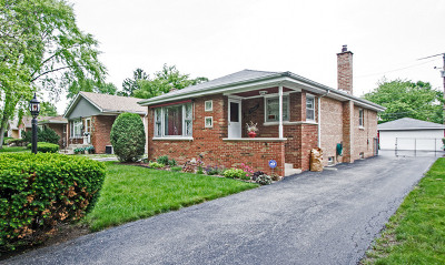 Dolton  Single Family Home For Sale: 15635 Drexel Avenue