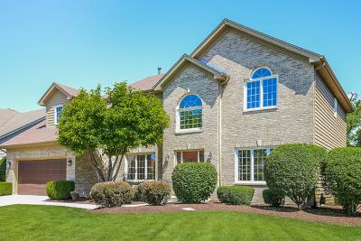 Naperville Single Family Home New: 3819 Sunburst Lane