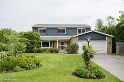 Highland Park Single Family Home For Sale: 541 Audubon Place
