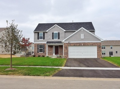 Joliet Single Family Home For Sale: 1905 Willoughby Lane